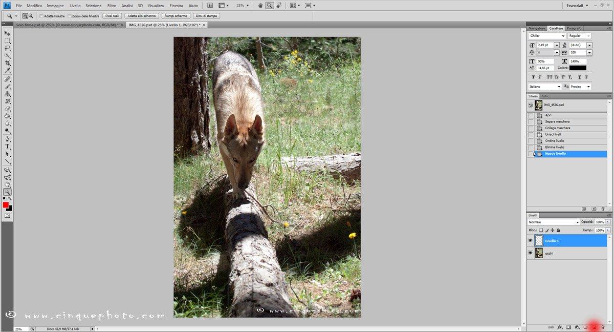 Passo 3: Aggiungere o rimuovere vignettatura alle foto