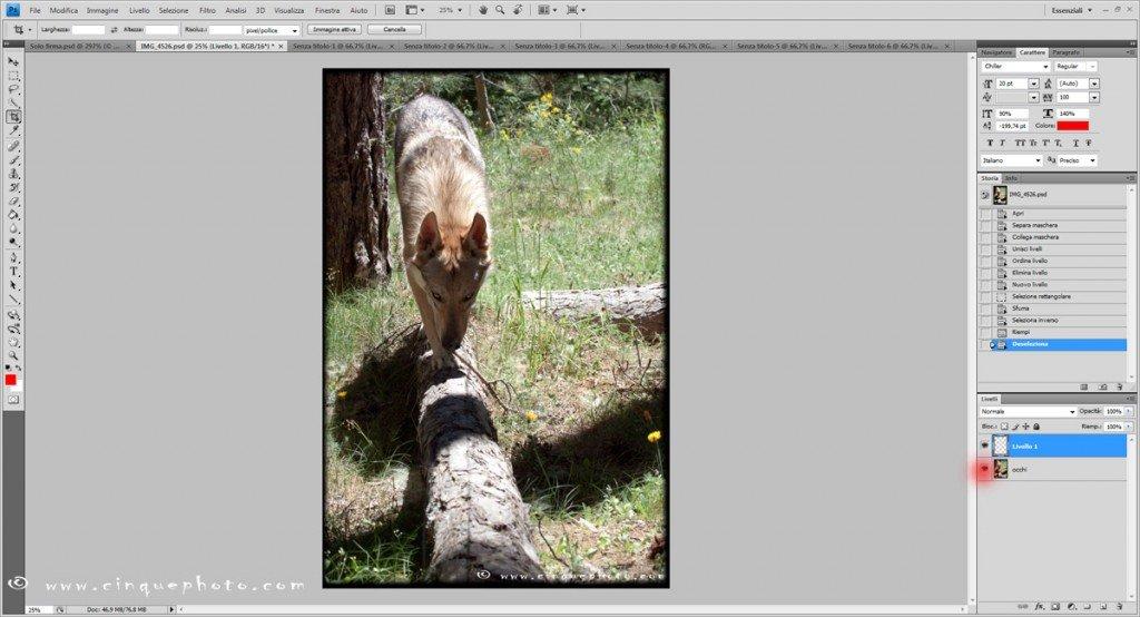 Come posso aggiungere o rimuovere vignettatura alle foto?