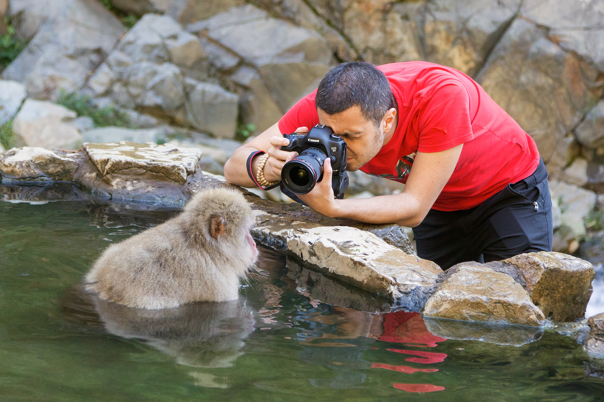 Francesco Cinque reportage snow monkeys Giappone