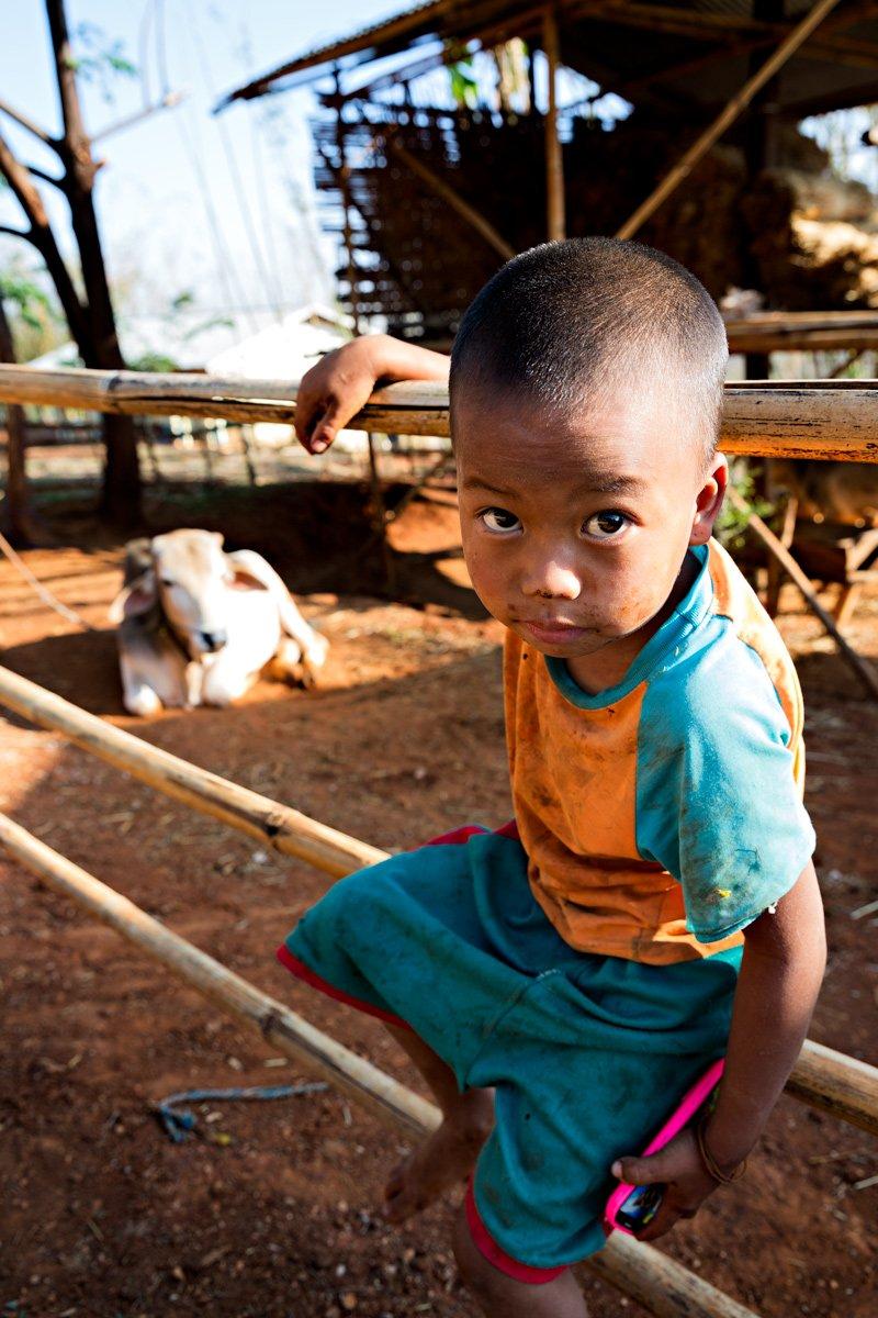 Un piccolo mandriano in un remoto villaggio del Myanmar