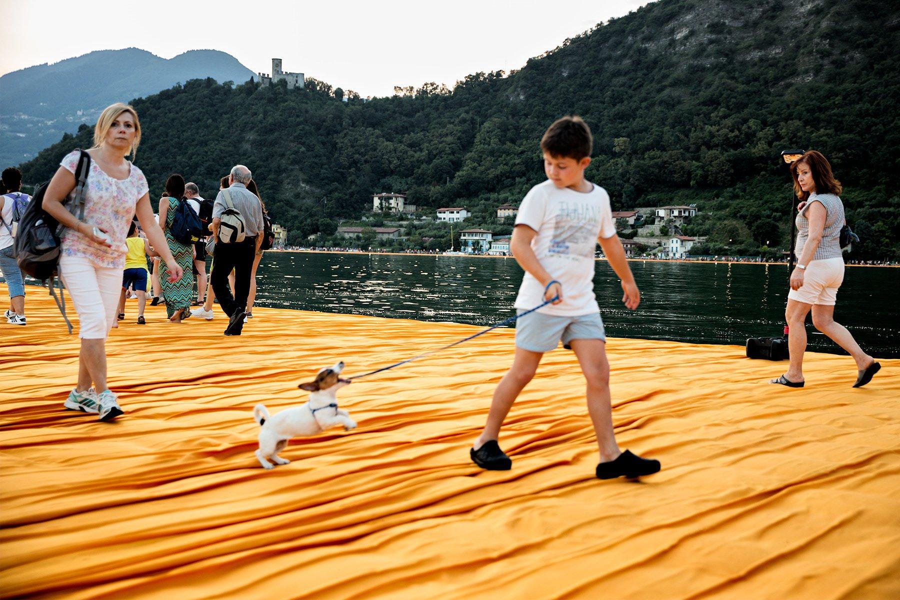 bambino gioca con un cane
