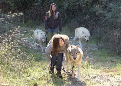 La bambina e il lupo
