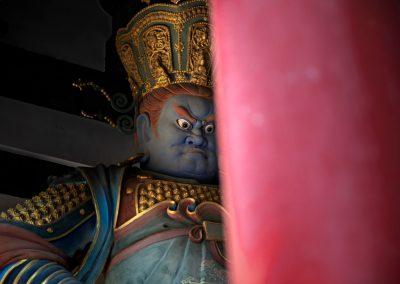 Guardiano entrata tempio Buddista
